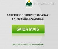 O SINDICATO E SUAS PRERROGATIVAS (ATRIBUIÇÕES EXCLUSIVAS)