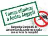 Março é o mês da Campanha Sinmed-MG de combate ao aedes aegyti.